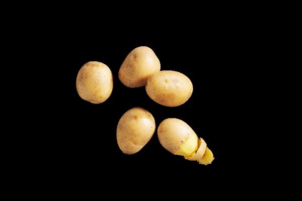 Zutaten-Kartoffeln